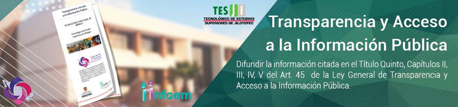 Transparencia y acceso a la información pública_TESJI